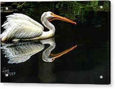 Feron's Heron Acrylic Print