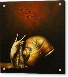 Festina Lente Acrylic Print by Simone Galimberti