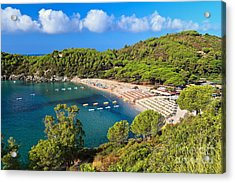 Fetovaia Beach - Elba Island Acrylic Print by Antonio Scarpi