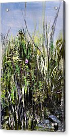Fever Acrylic Print by Dottie Branchreeves