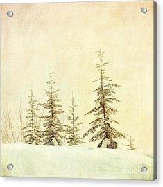 Winter's Mist Acrylic Print by Priska Wettstein