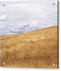 Field And Sky Near Rock Creek, South Acrylic Print by Bert Klassen