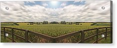 Field And Sky, South England Acrylic Print by Vast Photography