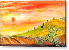 Field And Sunset Acrylic Print by Mary Armstrong