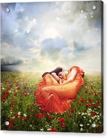 Field Of Desire Acrylic Print