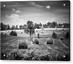 Field Of Hay In Black And White Acrylic Print