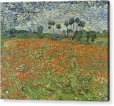 Field Of Poppies, Auvers-sur-oise, 1890 Acrylic Print by Vincent van Gogh