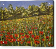 Field Of Poppies Acrylic Print by Paul Benson