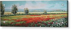 Field Of Poppies Acrylic Print by Sorin Apostolescu