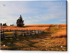 Field Of Shadows Acrylic Print