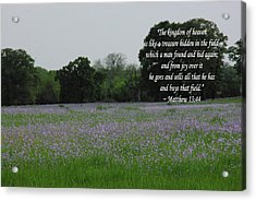 Field Of Treasure Acrylic Print by Robyn Stacey