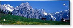 Field Of Wildflowers With Majestic Acrylic Print by Panoramic Images