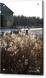 Field With Barn In The Background Acrylic Print by Birgit Tyrrell