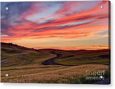 Fields And Dreams Acrylic Print by Mark Kiver