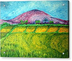 Fields Around Knocklayde Acrylic Print by Paul Morgan