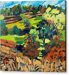 Fields In Autumn Acrylic Print