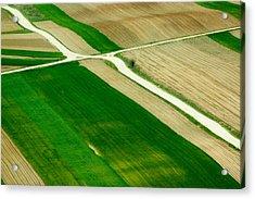 Fields In Spring Acrylic Print