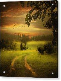 Fields Of Dreams Acrylic Print