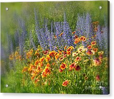 Fields Of Lavender And Orange Blanket Flowers Acrylic Print by Lingfai Leung