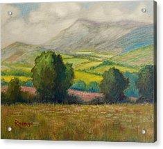 Fields Of Tipperary   Ireland Acrylic Print by Bernie Rosage Jr