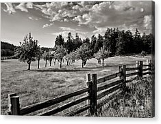Fields Over Yonder Acrylic Print