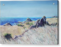 Fields With Rocks And Sea Acrylic Print by Asha Carolyn Young