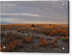 Acrylic Print featuring the photograph Fiery Dunes by Amazing Jules