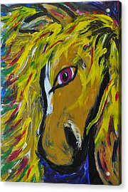 Fiery Steed Acrylic Print by JAMART Photography