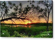 Fiery Swamp Sunset Acrylic Print by Deborah Smolinske