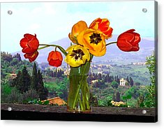 Fiesole Number One Acrylic Print
