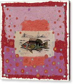 Fiesta Fish Collage Acrylic Print