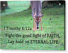 Fight Of Faith Acrylic Print