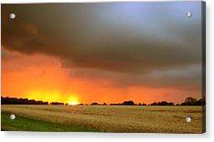 Fighting Sun Acrylic Print by Dave Woodbridge