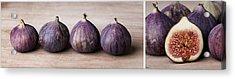 Figs Acrylic Print by Nailia Schwarz