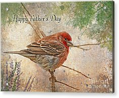 Finch Greeting Card Father's Day Acrylic Print by Debbie Portwood