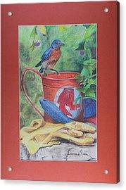 Finch Way Park Acrylic Print by Robert Stokes