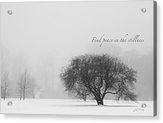 Find Peace In The Stillness Acrylic Print