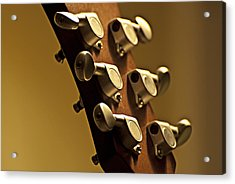 Finely Tuned Acrylic Print by Christopher Gaston