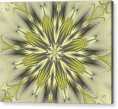 Finer Life Kaleidoscope Acrylic Print