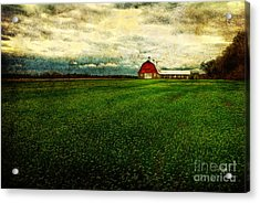 Finished Acrylic Print by Lois Bryan