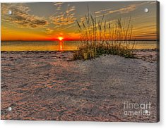 Finishing Moments Acrylic Print by Marvin Spates