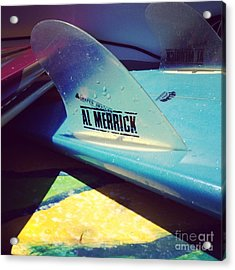 Fins  Acrylic Print by M West