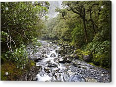 Fiordland National Park New Zealand Acrylic Print