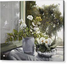 Fiori Bianchi Alla Finestra Acrylic Print by Danka Weitzen