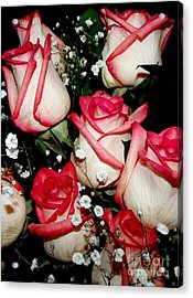Fire And Ice Roses Acrylic Print