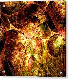 Fire And Shadow Acrylic Print by Anastasiya Malakhova