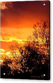 Fire Breather Acrylic Print by Russell  King