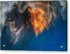 Fire Emblem Acrylic Print by Steve Belovarich
