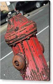 Fire Hydrant Acrylic Print by Lisa Phillips
