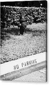 Fire Hydrant No Parking Curb In Residential Area Of Celebration Florida Usa Acrylic Print by Joe Fox